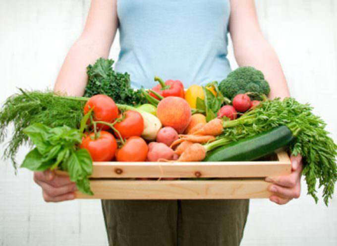 """""""Dieta vegetariana? Ok ma solo se integrata con vitamine"""""""
