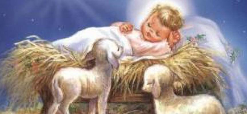 """Ben noto Riprendiamoci Gesù Bambino!"""": Dov'è finito il simbolo autentico  DN96"""