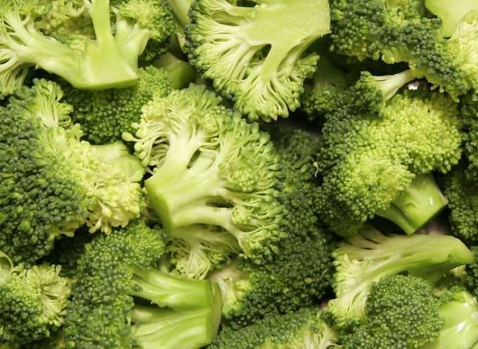 Vogliono brevettare i broccoli: Carlo Petrini lancia l'allarme