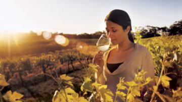 Best of Wine Tourism: Per l'Italia ha vinto Villa Vignamaggio di Greve in Chianti