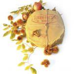 Cheese Of The Year 2010: Medaglia d'oro al Pincion Riserva di Toniolo