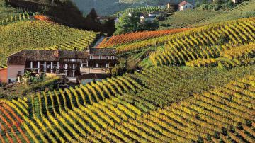 "SWEET HILLS PIEMONTE EDUCATIONAL TOUR"" MAY 2013: I Vini del Monferrato: (press information in English)"