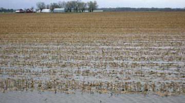 Agricoltura,Cia: il maltempo ha distrutto mezzo miliardo di produzione