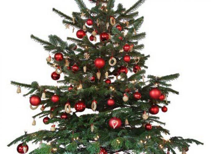 """Natale: Gli italiani preferiscono addobbare l'albero """"vero"""""""