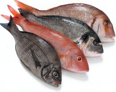 Pesce: Etichettatura corretta by MDC