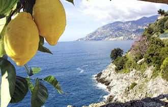 Limone di Sorrento e castagna di Montella: gli aromi della birra in Campania