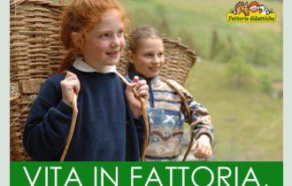 La Regione Lombardia promuove un concorso fotografico per illustrare l'attività didattica in una fattoria