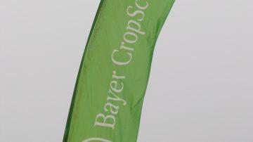 """A Sapore Agrifil, Bayer CropScience: anticipo su """"La fragola"""" della collana """"Coltura&Cultura"""", ideata da Renzo Angelini"""