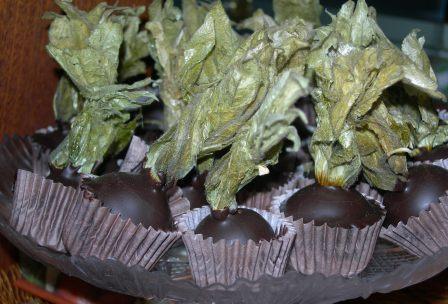 Alchechengi: a Natale, il frutto si tuffa nel cioccolato