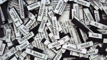 14 minuti, 160 ripetizioni: così il cervello impara nuove parole