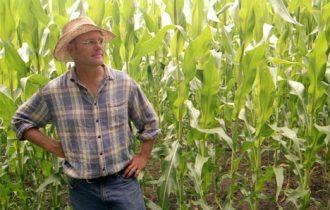 Redditi in calo: Ancora grandi difficoltà per la nostra agricoltura