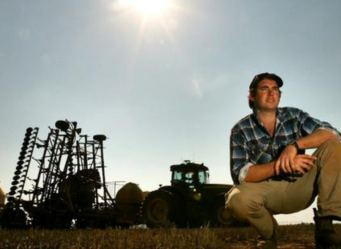 Lavoro: Cala l'occupazione in agricoltura