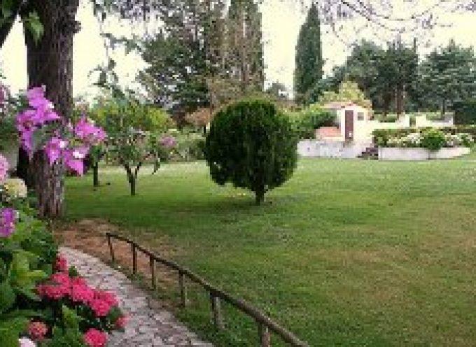 Caserta: A Villa Matilde si festeggia l'Epifania