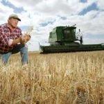 Volano prezzi grano per danni da alluvione