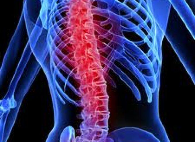 Micro-protesi per riparare le lesioni del midollo spinale