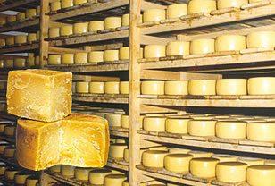 Anche la Croazia ha degli ottimi formaggi