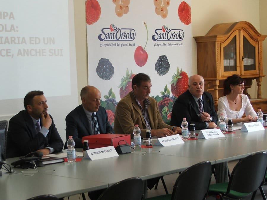 Cooperativa Sant'Orsola di Pergine Valsugana, leadership nel mercato dei piccoli frutti