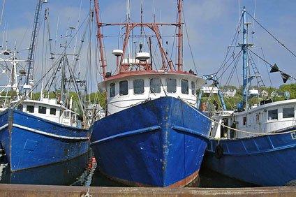 Genova si prepara per la quinta edizione di Slow Fish