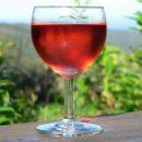 Tradizionale guardando il nuovo. La via del vino di Piemonte