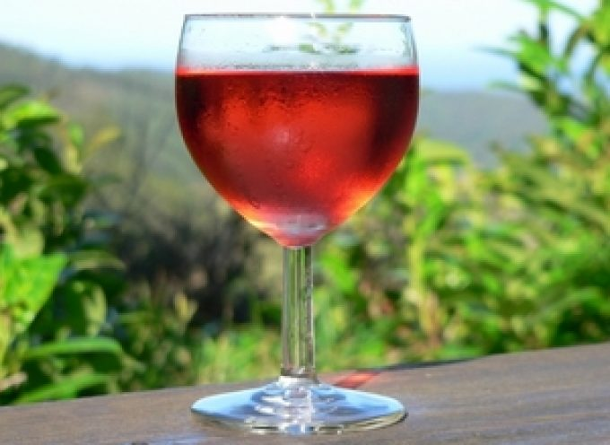 La Puglia al Vinitaly 2011: 137 aziende con oltre 1500 etichette