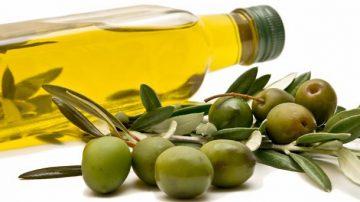 La Provenza è la regione clou dell'olio d'oliva di Francia: 3 milioni e mezzo di olivi