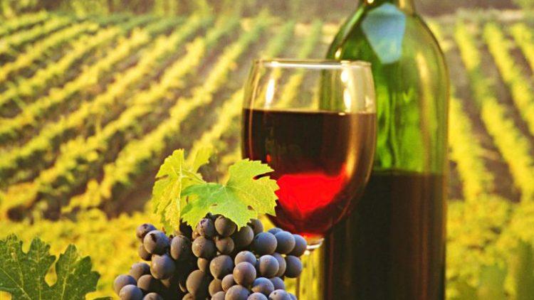 11-12 Febbraio. A Roma arriva il vino dell'Alto Adige
