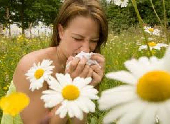 Allergie, l'anidride carbonica diffonde il polline