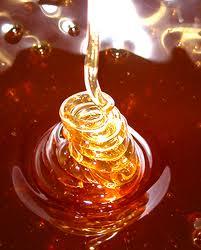 Batteri: il miele di Manuka diminuisce la resistenza ai farmaci