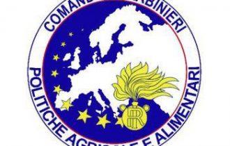 """""""Contro le frodi alimentari, al servizio dei cittadini"""": Il resoconto dell'Attività Operativa 2010 del Comando Carabinieri Politiche Agricole e Alimentari"""