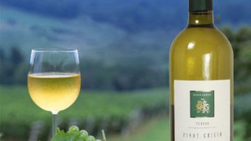 Più vigneti, meno aziende: il paradosso del Veneto del vino