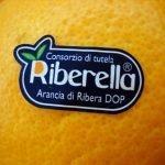Ribera: Non solo arance!