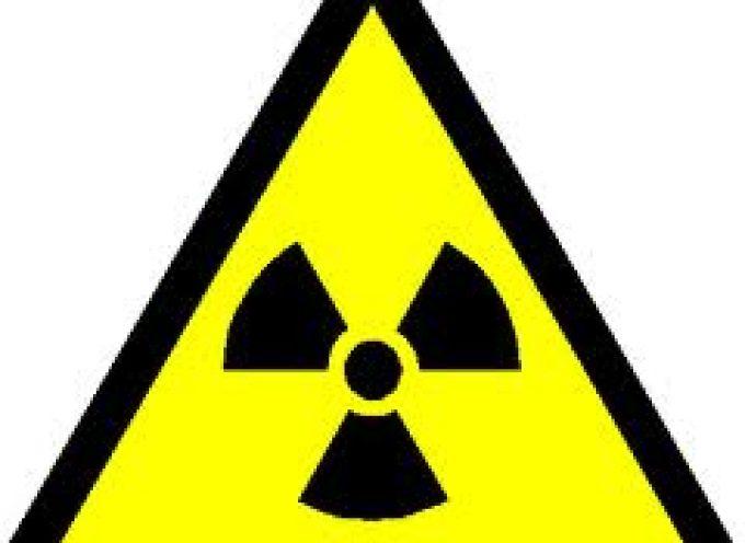 Da noci ed uva una difesa naturale contro le radiazioni