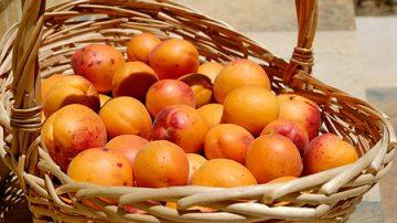 La vitamina A rallenta il cancro al pancreas