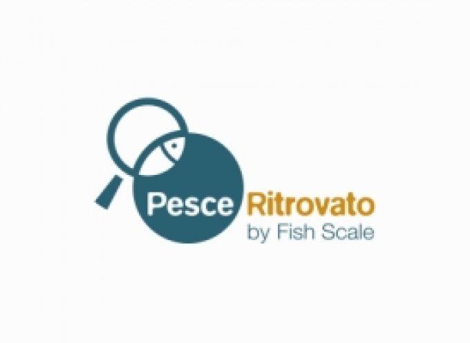 """Acquario di Genova: Al via il progetto """"Pesce ritrovato"""" sul consumo ittico consapevole"""