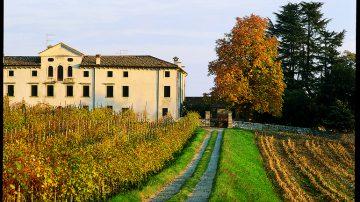 Cornuda (TV): 21° Mostra dei Vini e 7° Mostra Prodotti Tipici del Comprensorio dei Colli Asolani e Montello