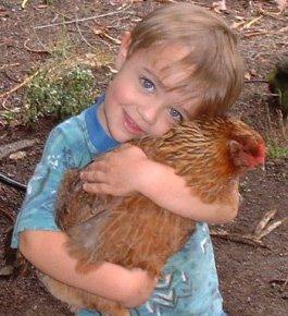 """Contro gli animalisti. A Roma il convegno """"viene primo l'uomo o la gallina?"""""""