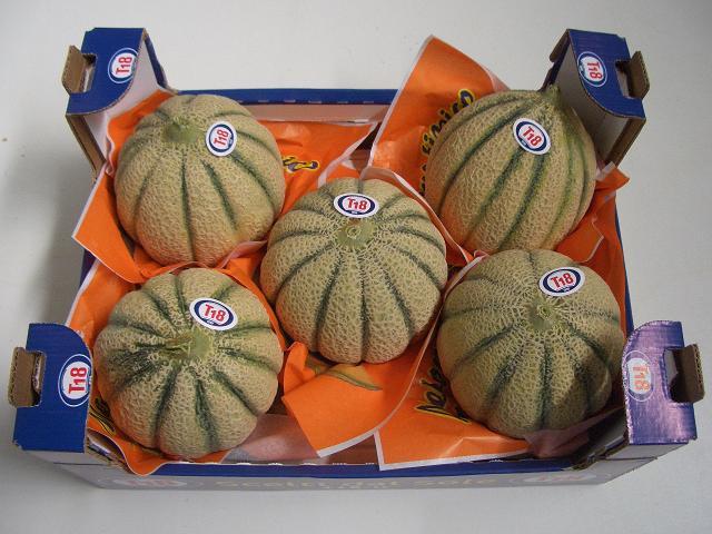 Sulle tavole degli italiani arriva il melone mantovano di T18, azienda leader nella distribuzione di ortofrutta di qualità