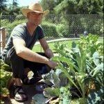 Lavoro, solo l'agricoltura assume: +1,1% di occupati