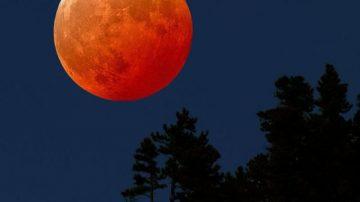 Arriva la luna rossa e l'agricoltura biodinamica si ferma