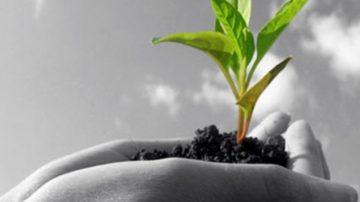 Oggi chiude SANA 2011: soddisfatti espositori, visitatori professionali e organizzatori