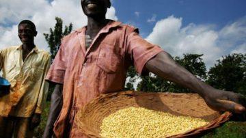 """G20, Giuseppe Politi: """"Più agricoltura per sfamare il mondo"""""""