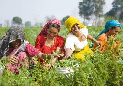 BioFach e Vivaness 2012: 50 espositori indiani presenteranno la loro azienda e le loro delizie biologiche