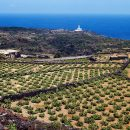 """Mostra fotografica """"Pantelleria 1968-72, Emozioni di un paesaggio"""" nelle foto di Renato Bazzoni"""