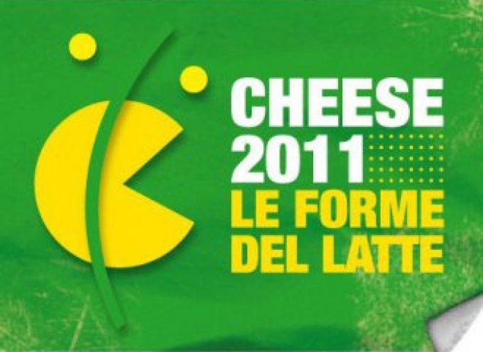 Bra (Cn): Dal 16 al 19 settembre torna Cheese
