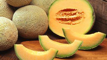 In provincia di Pavia, ladri fanno razzia di angurie e meloni