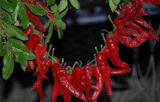 26 e 27 agosto: Torna il Festival del Peperone dolce di Altino (CH)