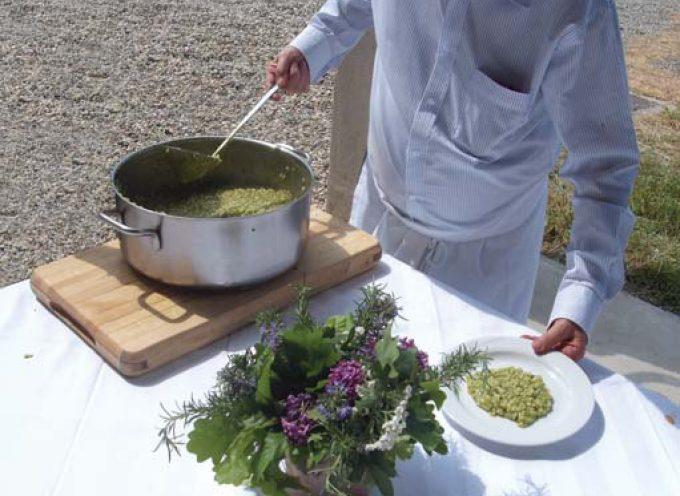 Il vero Carnaroli, il riso degli Chef, in festa alla riseria Riserva San Massimo