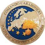 Controlli dei NAC di Parma: Riscontrate irregolarità sulle produzioni DOP/IGP