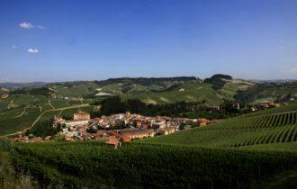 Barolo: WiMu, il Museo del vino riapre i battenti