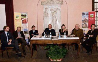 """""""Verso la Pedemontana Veneta"""": Progetto strategico di valorizzazione del territorio"""